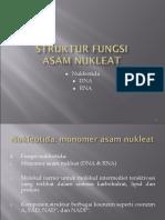 11. Struktur & Fungsi as. Nukleat (Anita)-Rev