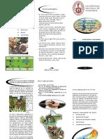 Triptico Agropecuario ECOLOGIA (1).pdf