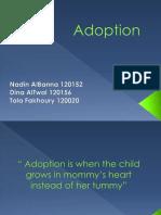 Cultural Development Adoption