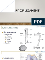 Injury of Ligament