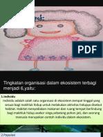 ipa_danis.pptx