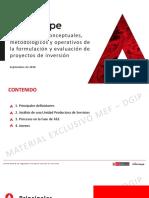 Lineamientos_fye_proyectos.pdf