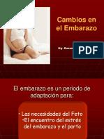 Cambios_embarazo[1]ookkk.ppt