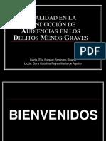Delitos Menos Graves