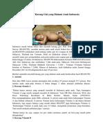 3 Masalah Kurang Gizi Yang Dialami Anak Indonesia
