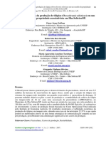 analise economica.pdf