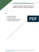 TEMA 20. EL LENGUAJE ALGEBRAICO. SÍMBOLOS Y NÚMEROS. EVOLUCIÓN HISTÓRICA DEL ÁLGEBRA