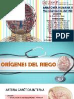 Vascularización Del SNC