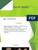 Histología Del Cerebelo -Uss
