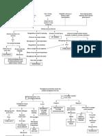 1.1 PATHWAY PERITONITIS R19.doc