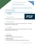 Perfil Del Proyecto (PFI)