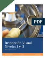Manul de inspeccion Visul Nivel 1 y 2
