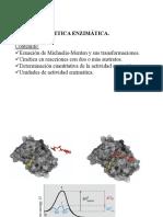 Tema-3.3-Cinetica-enzimatica.pdf