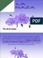 AA_Medicina_LA-LINAZA.pps