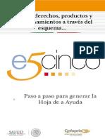 Folleto_e5cinco