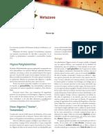 Apt Parasitologia 1a Capitulo Muestra c06 METAZOOS