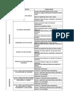 b. Matriz Ced Competencias y Capacidades