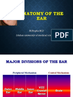Anatomy of ear