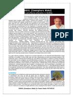 GUGGUL (Commiphora Mukul)-Dr Pramod Nanda 9437409132