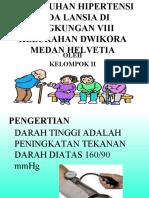 Penyuluhan Hipertensi Pada Lansia Di Lingkungan Viii Kelurahan