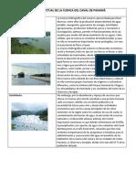 Situacion Actual de La Cuenca Del Canal de Panamá