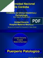 24+Puerperio+Patologico+Hemorragico+e+Infeccioso