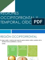 Regiones Occipitofrontal y Temporal, Pabellón Auricular,Oído