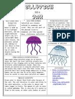 Jellyfish Handout