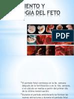 CRECIMIENTO Y FISIOLOGIA DEL FETO, LIQUIDO AMNIOTICO.pptx