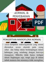 Ppt Mikroflora Normal & Penyebaran Bakteri