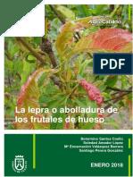 Frut 479 Injerto Frutales2013 (1)