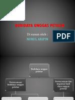 Budidaya Unggas Petelur Nurul Aripin