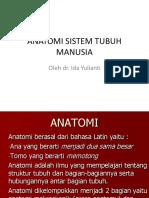 Anatomi Sistem Tubuh Manusia