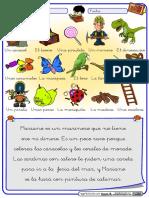 Lectura-R-suave-color.pdf