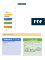 Anexo Nc2b0 2 Diapositivas1