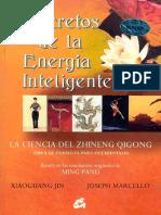 Zhineng Qigong Secretos de La Energia Inteligente 1 a 300