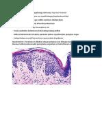 Anemia Mikrositik