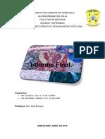 420-2014!02!18-Seminario 06 Exploracion Cadera y Rodilla