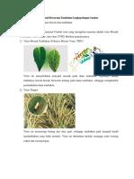 Virus Yang Menyerang Manusia Hewan dan Tumbuhan Lengkap dengan Gambar.docx