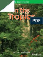 20 in the Tropics
