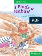 27 Tess Finds a Seabird