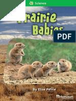 14 Prairie Babies