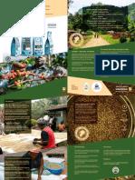 Virachi Intl - Nyasaland Coffee Brochure