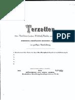 Mertz, Johann Kaspar (1806 - 1856) - Op. 32 -  Terzetto per Chitarra, Flauto e Viola su ''Der Prophet'' di Meyerbeer.pdf