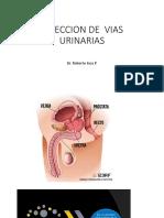 16 SEMIO II. Prostatitis