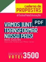1535590103revista_campanha