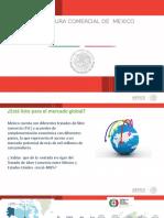 Ponencia Sría. Economía.ppt