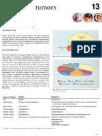 chap13.pdf