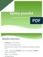 selmy_psovite (1).pptx