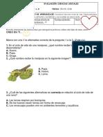 Evaluación Ciencias Sociales - Copia